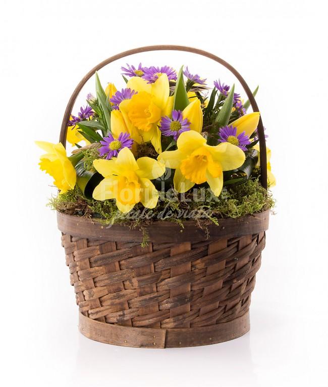 cosuri cu flori 8 martie narcise
