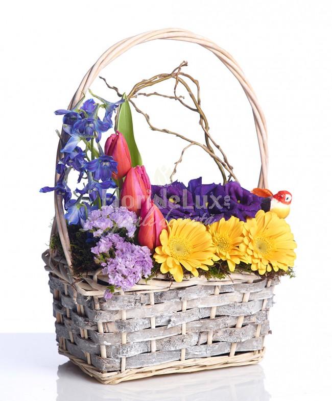 flori de 8 martie colorat