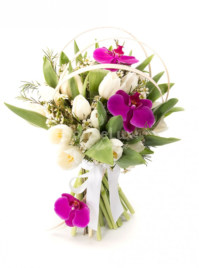 buchet_lalele_si_orhidee_2_flori 8 martie