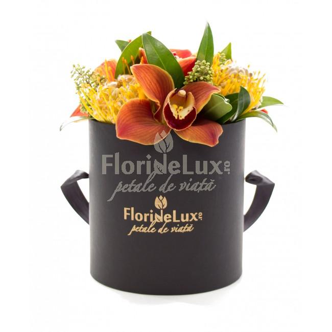 cutii cu flori 8 martie business