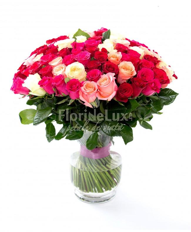 101 trandafiri 8 martie cadou