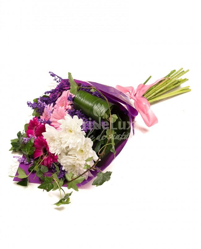 8 martie flori crizanteme colorate