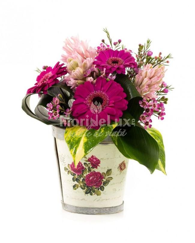 cos flori 8 martie zambile