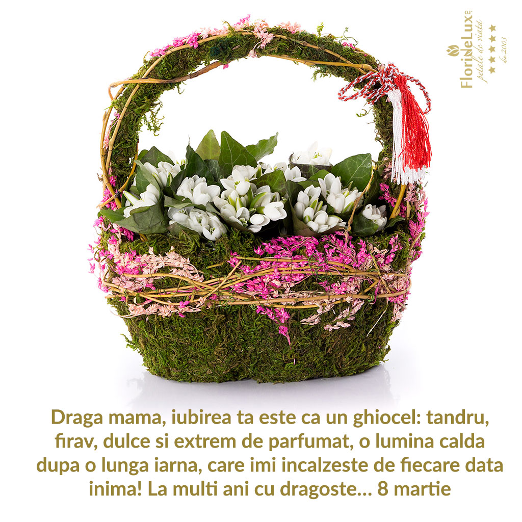 felicitar-8-martie_ghiocel