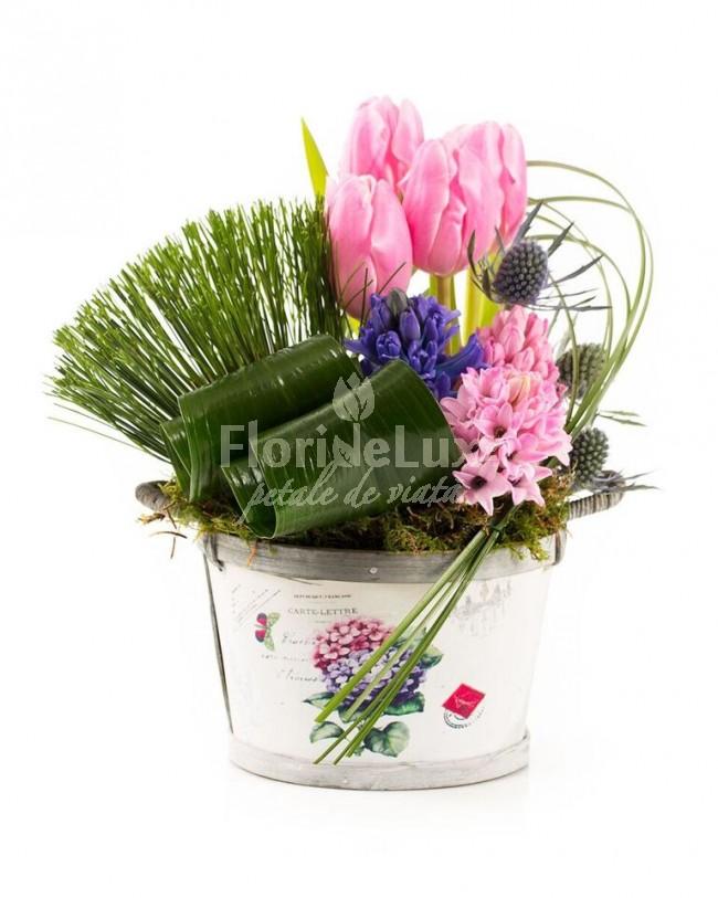 Cosulete cu flori de 8 martie - Flori 8 Martie
