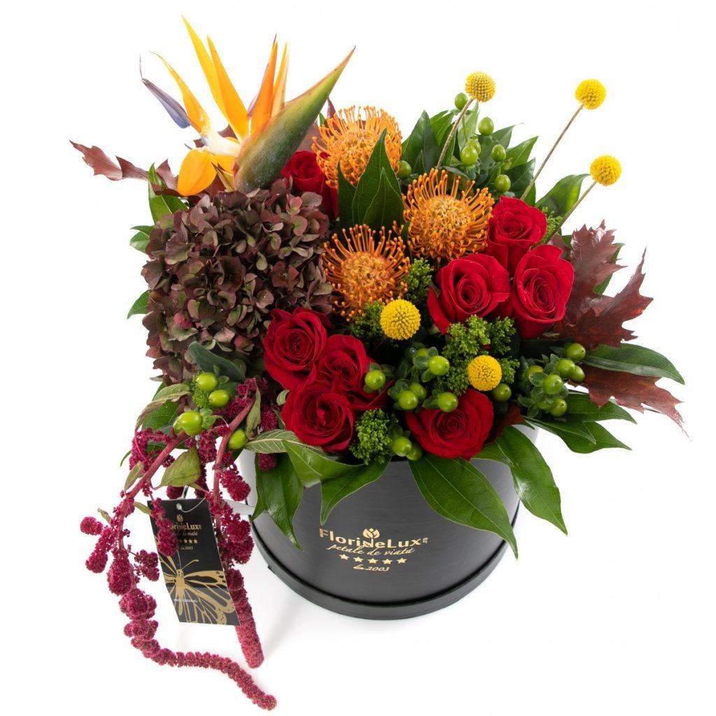 Cutie flori senzationale