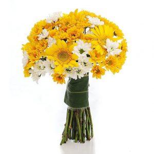 Crizanteme, flori cu suflet de primavara